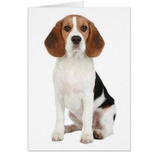 Tarjeta de nota del espacio en blanco del perro de