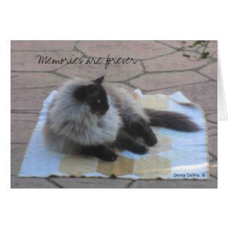 Tarjeta de nota del gato de las memorias