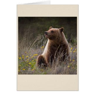 Tarjeta de nota del oso - espacio en blanco