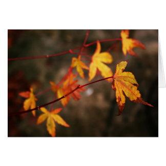 Tarjeta de nota del otoño que llora