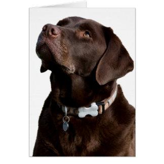 Tarjeta de nota del perro de perrito del labrador