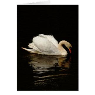 Tarjeta de nota en blanco con el cisne hermoso