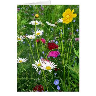 Tarjeta de nota en blanco: Wildflowers de la