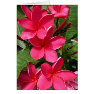 tarjeta de nota - plumerias rosados