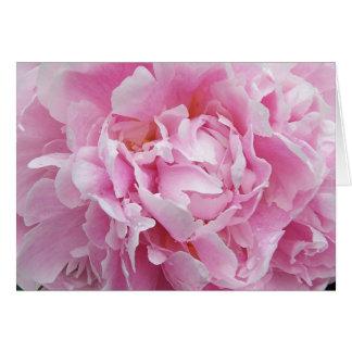 Tarjeta de nota rosada bonita del Peony