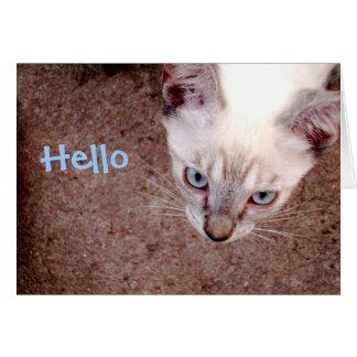 """Tarjeta de nota siamesa del gatito """"hola """""""