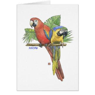 Tarjeta de nota tropical de los Macaws