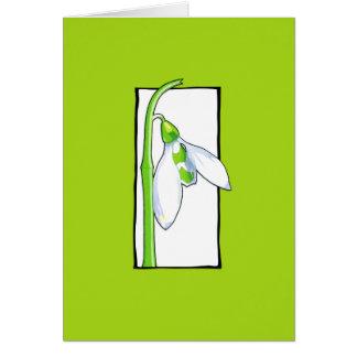 Tarjeta de nota verde blanca de Snowdrop