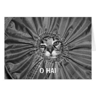 Tarjeta de O Hai LOLcat