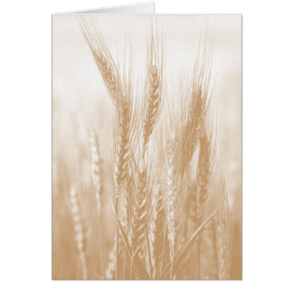 Tarjeta de oro del trigo