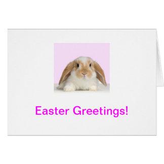 Tarjeta de pascua del conejo de conejito