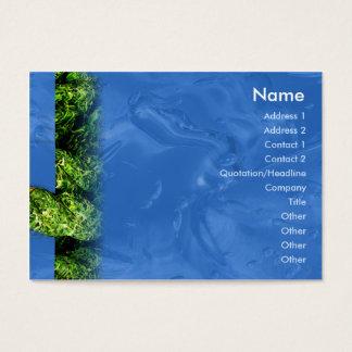 Tarjeta De Visita Agua e hierba - rechonchas