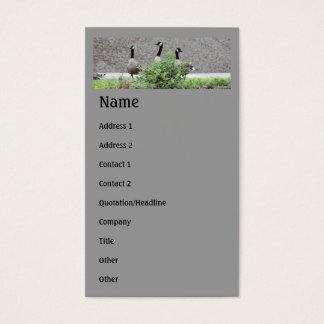 Tarjeta de visita animal de los gansos salvajes de