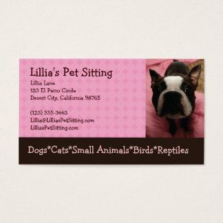 Tarjeta De Visita Canguro Boston Terrier del mascota
