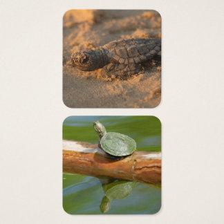 Tarjeta De Visita Cuadrada El hogar de la oficina de la tortuga personaliza