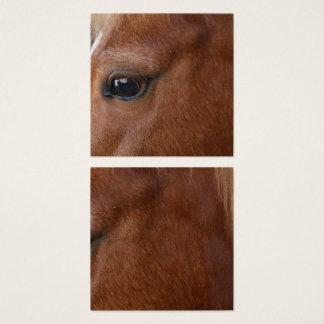 Tarjeta De Visita Cuadrada Ojo del caballo
