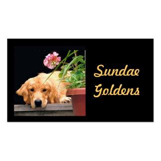 Tarjeta de visita de Goldens del helado
