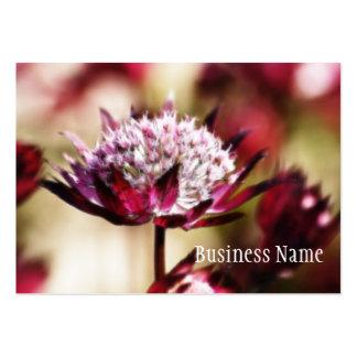 Tarjeta de visita de la flor del Astrantia