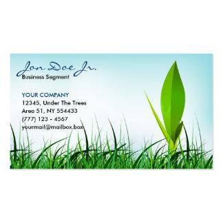 tarjeta de visita de la hierba y del brote