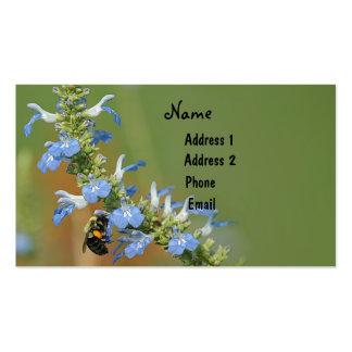 Tarjeta de visita del sabio y de la abeja