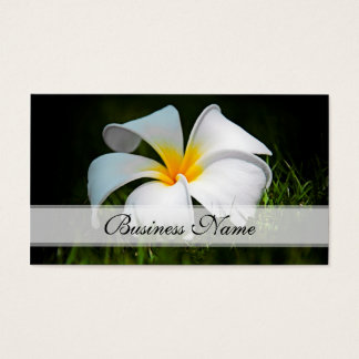 Tarjeta De Visita Flores blancas de Hawaii del Frangipani del