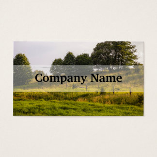 Tarjeta De Visita Fotografía del paisaje del prado de la puesta del
