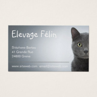 Tarjeta de visita gato, de ganadería felina