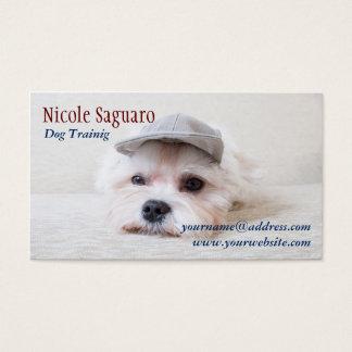 Tarjeta De Visita Groomer del adiestrador de perros