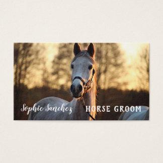 Tarjeta De Visita Profesional de la foto del novio del caballo