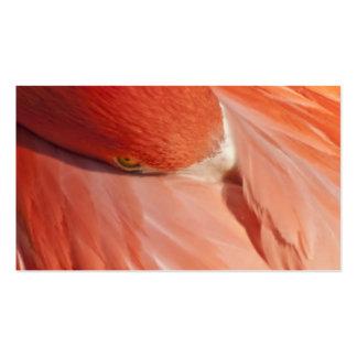 Tarjeta de visita rosada del primer del flamenco