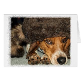 "Tarjeta del beagle de ""Davy Crockett"""