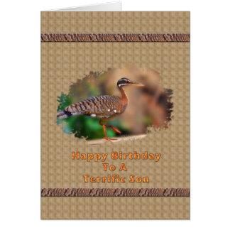 Tarjeta del cumpleaños del hijo con el pájaro de