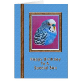 Tarjeta del cumpleaños del hijo con el Parakeet