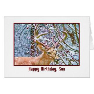 Tarjeta del cumpleaños del hijo con las manzanas