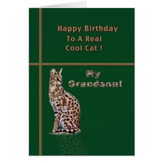 Tarjeta del cumpleaños del nieto con el Ocelot