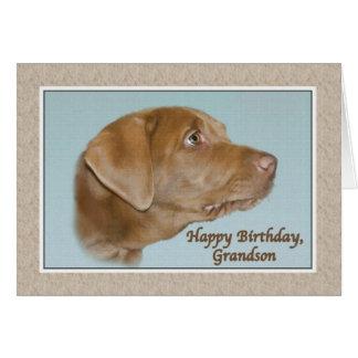 Tarjeta del cumpleaños del nieto con el perro de