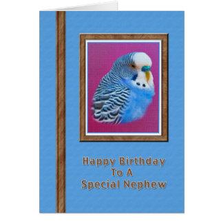 Tarjeta del cumpleaños del sobrino con el Parakeet