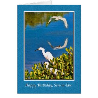 Tarjeta del cumpleaños del yerno, pájaros del