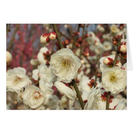 Tarjeta del de agradecimiento de los flores