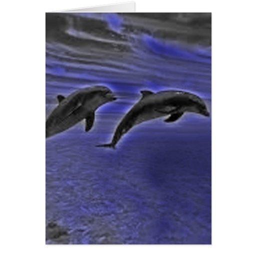 Tarjeta del delfín