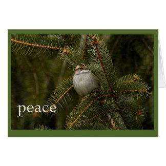 tarjeta del día de fiesta de la paz del gorrión