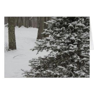 Tarjeta del día de fiesta del pino Nevado