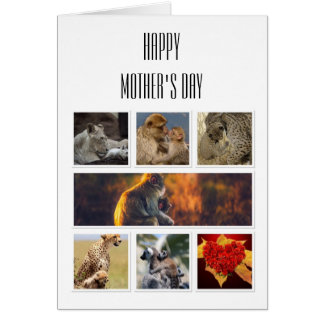 Tarjeta del día de madre - collage de fotos de
