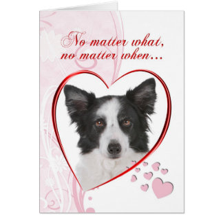 Tarjeta del día de San Valentín del border collie