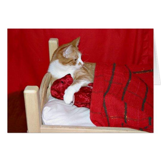 Tarjeta del día de San Valentín del gatito y del