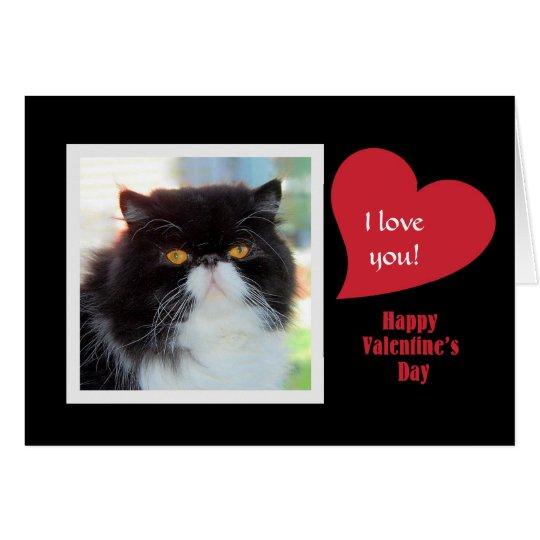Tarjeta del día de San Valentín del gato persa te