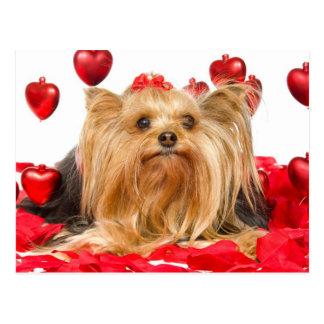 Tarjeta del día de San Valentín linda de Yorkie Postal