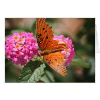 Tarjeta del estímulo de la mariposa