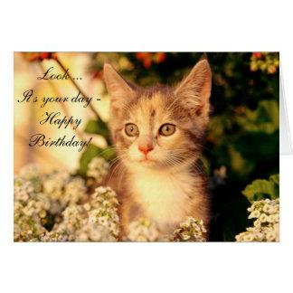 Tarjeta del feliz cumpleaños con el gatito