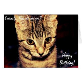 Tarjeta del feliz cumpleaños con el gato serio